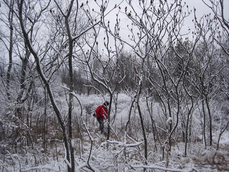 chris snow