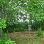 Hole 6 Basket