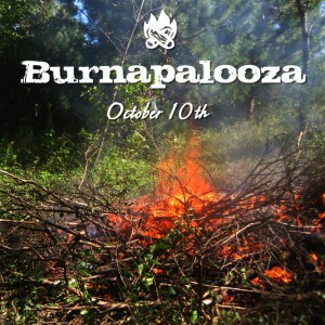burnapalooza square