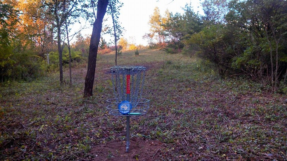 Hole 17 basket